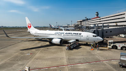 JA333J - JAL - Japan Airlines - Airport Overview - Aircraft Detail