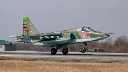 RF-95169 - Russia - Air Force Sukhoi Su-25SM