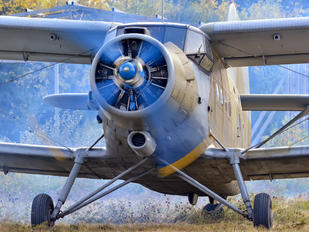 70373 - Serbia - Air Force Antonov An-2