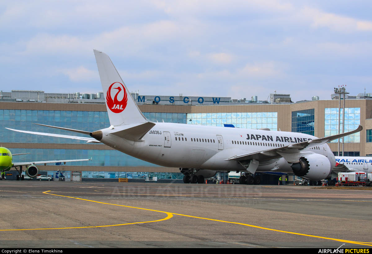 JAL - Japan Airlines JA836J aircraft at Moscow - Domodedovo