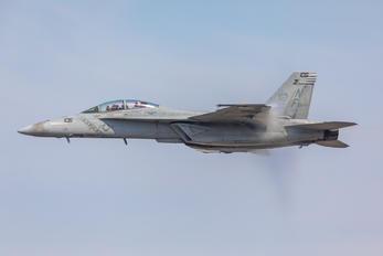 166921 - USA - Navy McDonnell Douglas F/A-18F Super Hornet