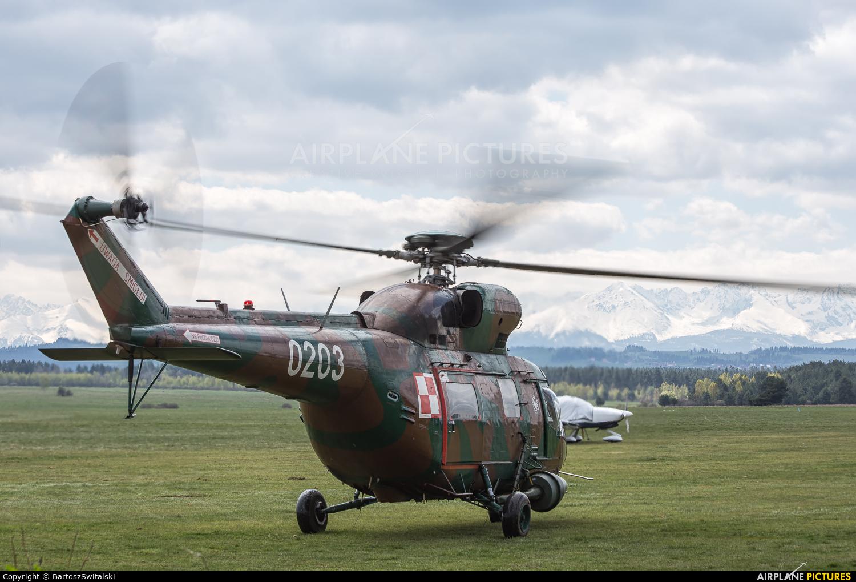 Poland - Army 0203 aircraft at Nowy Targ