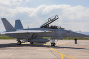 251 - USA - Navy Boeing F/A-18F Super Hornet aircraft