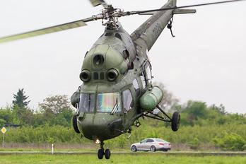 7838 - Poland - Army Mil Mi-2