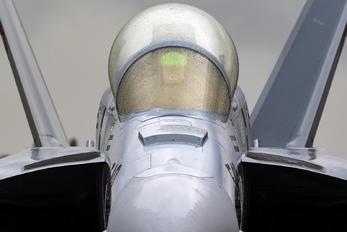 169137 - USA - Navy Boeing EA-18G Growler