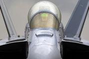 169137 - USA - Navy Boeing EA-18G Growler aircraft