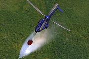D-HEGY - Bundespolizei Eurocopter AS332 Super Puma aircraft