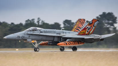 15-01 - Spain - Air Force McDonnell Douglas EF-18B Hornet