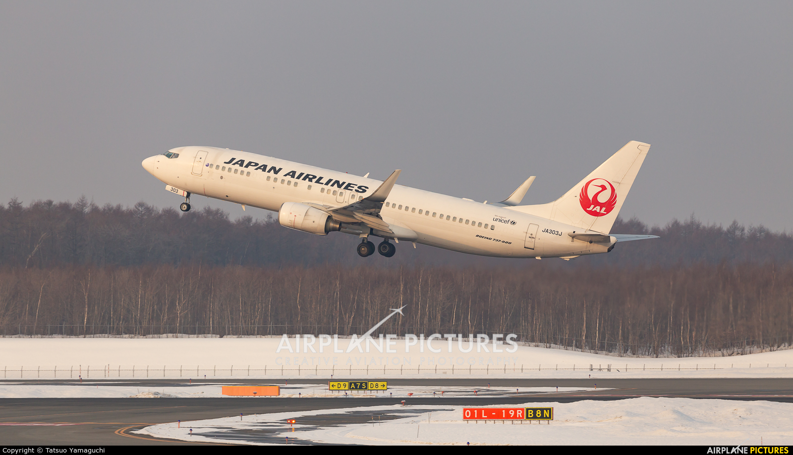 JAL - Japan Airlines JA303J aircraft at New Chitose