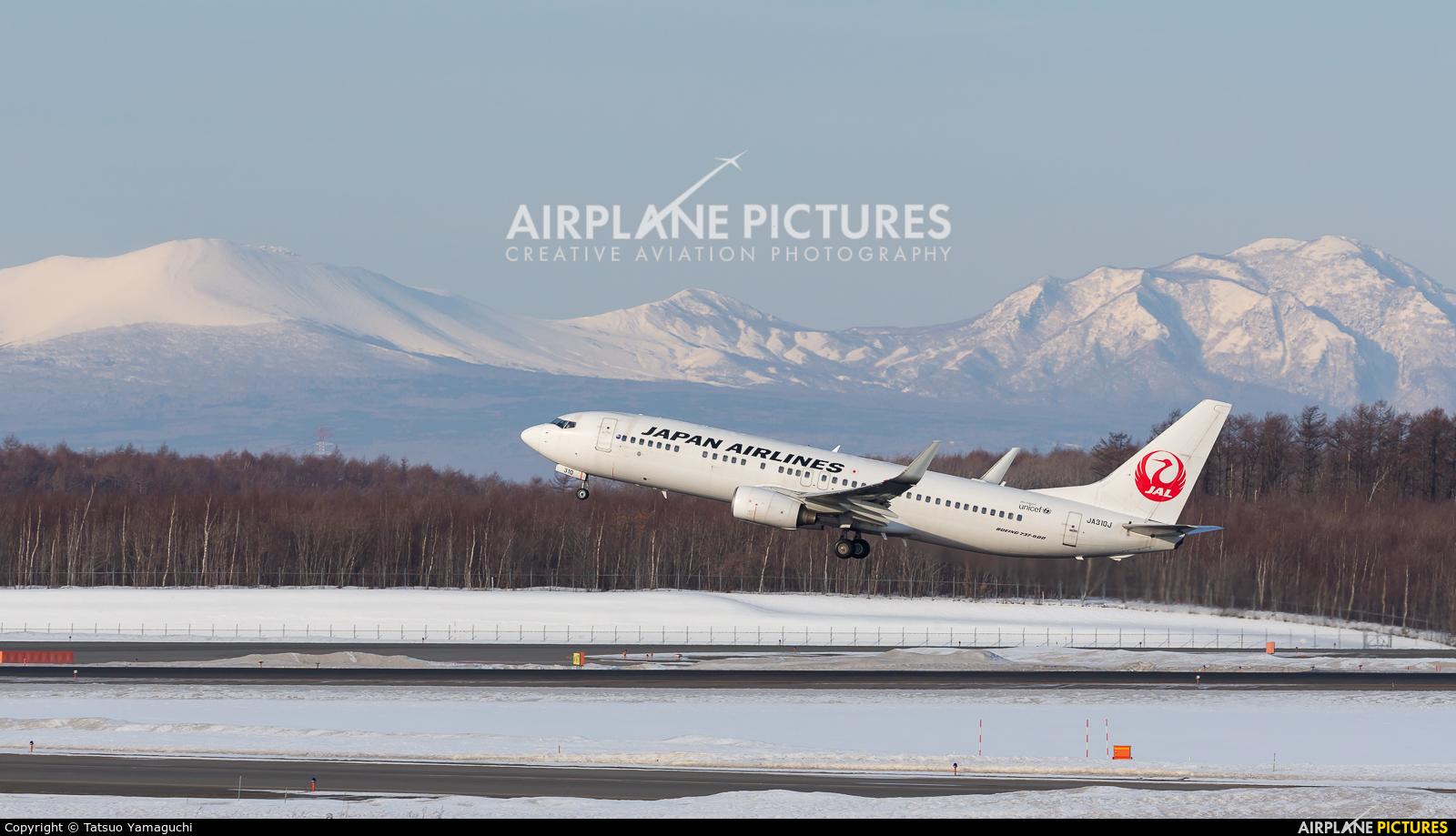JAL - Japan Airlines JA310J aircraft at New Chitose