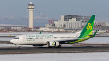 JA01GR - Spring Airlines Japan Boeing 737-800 aircraft