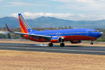 N8631A - Southwest Airlines Boeing 737-800