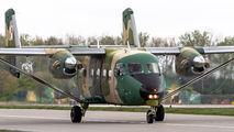 0215 - Poland - Air Force PZL M-28 Bryza aircraft