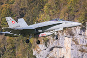 J-5009 - Switzerland - Air Force McDonnell Douglas F/A-18C Hornet aircraft