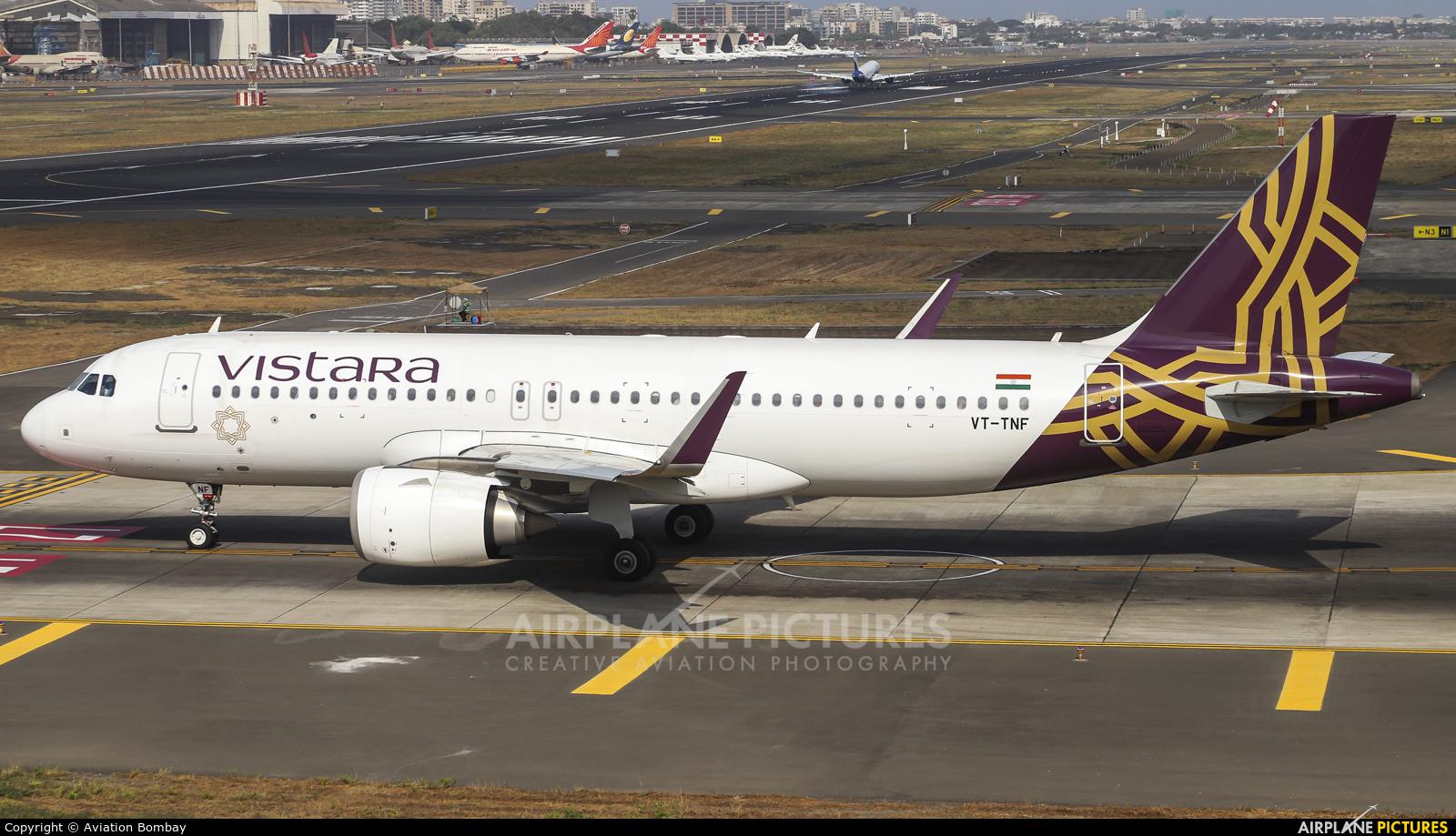 Vistara VT-TNF aircraft at Mumbai - Chhatrapati Shivaji Intl