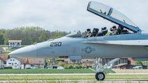 250 - USA - Navy Boeing F/A-18F Super Hornet aircraft