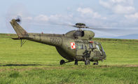 0602 - Poland - Army PZL W-3 Sokół aircraft