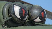 6112 - Poland - Army Mil Mi-17-1V aircraft