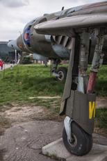 XW-919 - Royal Air Force Hawker Siddeley AV-8A Harrier