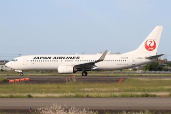 JA302J - JAL - Japan Airlines Boeing 737-800