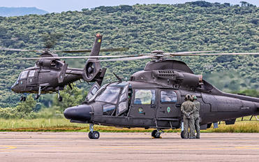 2031 - Brazil - Army Helibras HM-1 Pantera
