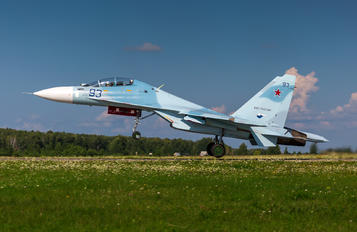 93 - Russia - Air Force Sukhoi Su-30 M2
