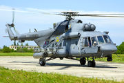 53 - Russia - Air Force Mil Mi-8AMTSh-1 aircraft