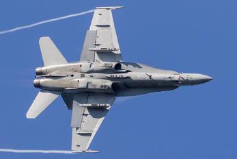 HN-429 - Finland - Air Force McDonnell Douglas F-18C Hornet