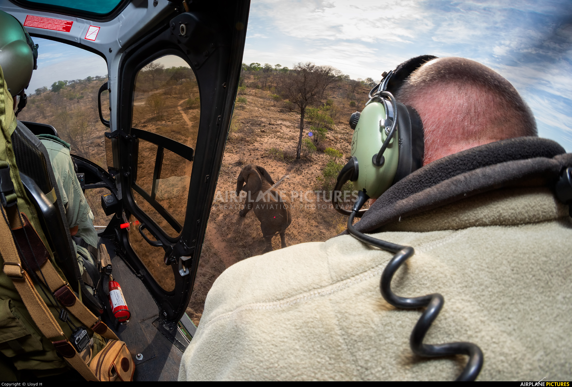 South Africa National Parks Air Wing ZS-OXK aircraft at In Flight - South Africa