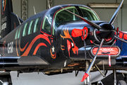 CS-EAR -  Pacific Aerospace 750XL aircraft