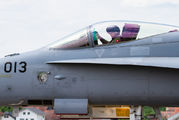 J-5013 - Switzerland - Air Force McDonnell Douglas F-18C Hornet aircraft