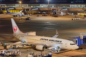 JA315J - JAL - Japan Airlines Boeing 737-800