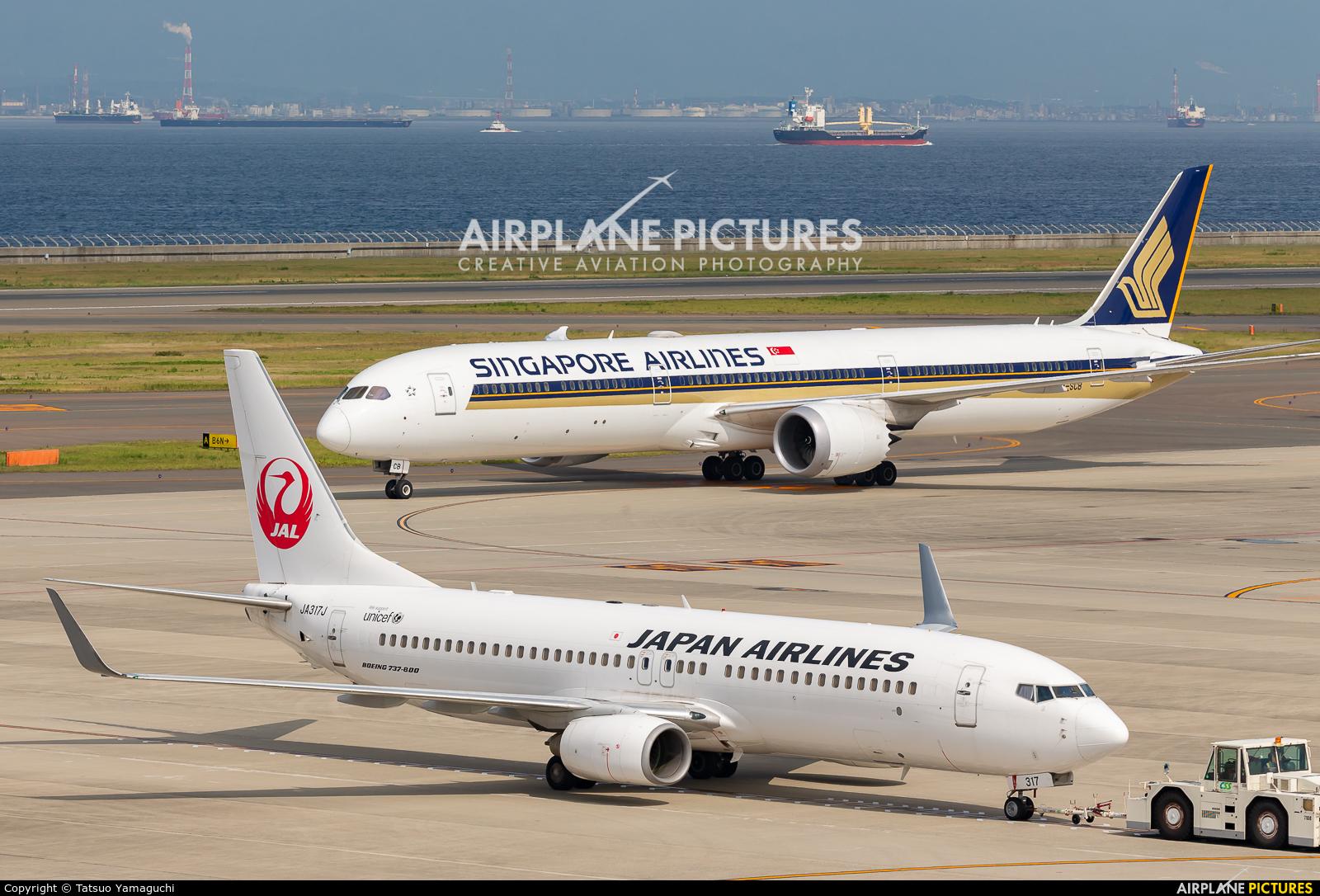 JAL - Japan Airlines JA317J aircraft at Chubu Centrair Intl