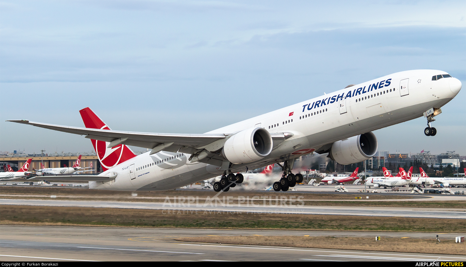 Turkish Airlines TC-LJC aircraft at Istanbul - Ataturk