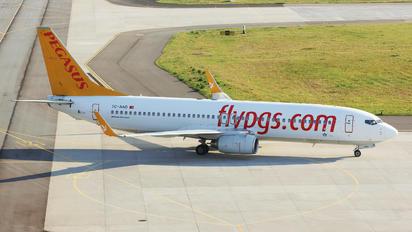 TC-AAO - Pegasus Boeing 737-800