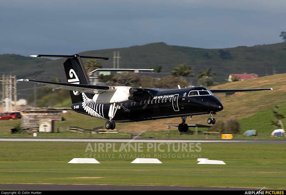 Air New Zealand Link - Air Nelson ZK-NEM aircraft at Tauranga