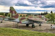 26 - Stalin Line Museum Sukhoi Su-25 aircraft