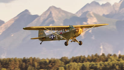 SP-AFY - Private Piper L-4 Cub