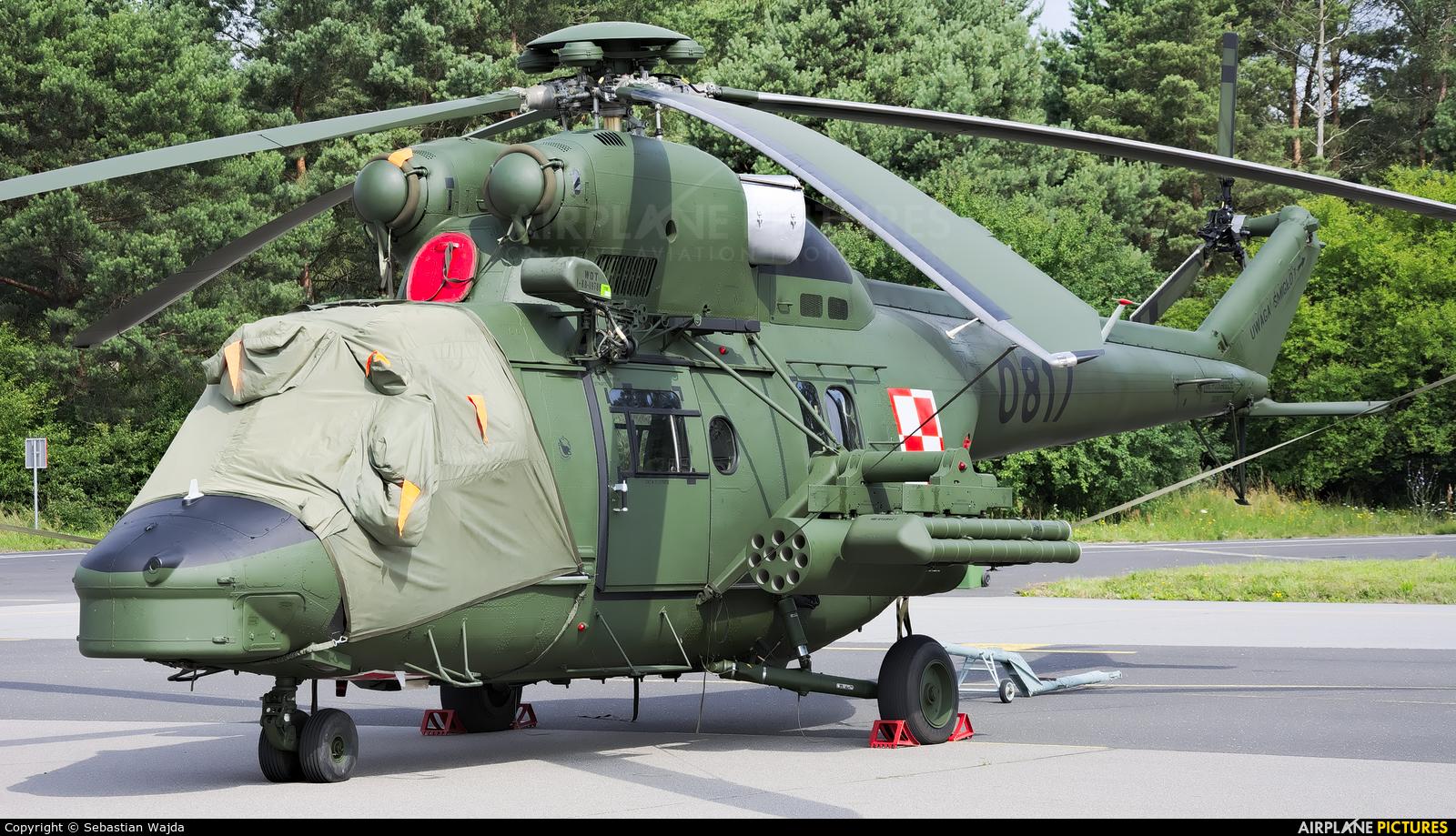 Poland - Army 0817 aircraft at Gdynia- Babie Doły (Oksywie)