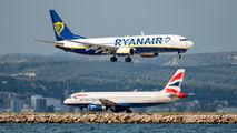 EI-DCM - Ryanair Boeing 737-800 aircraft