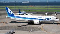 ANA - All Nippon Airways JA817A image