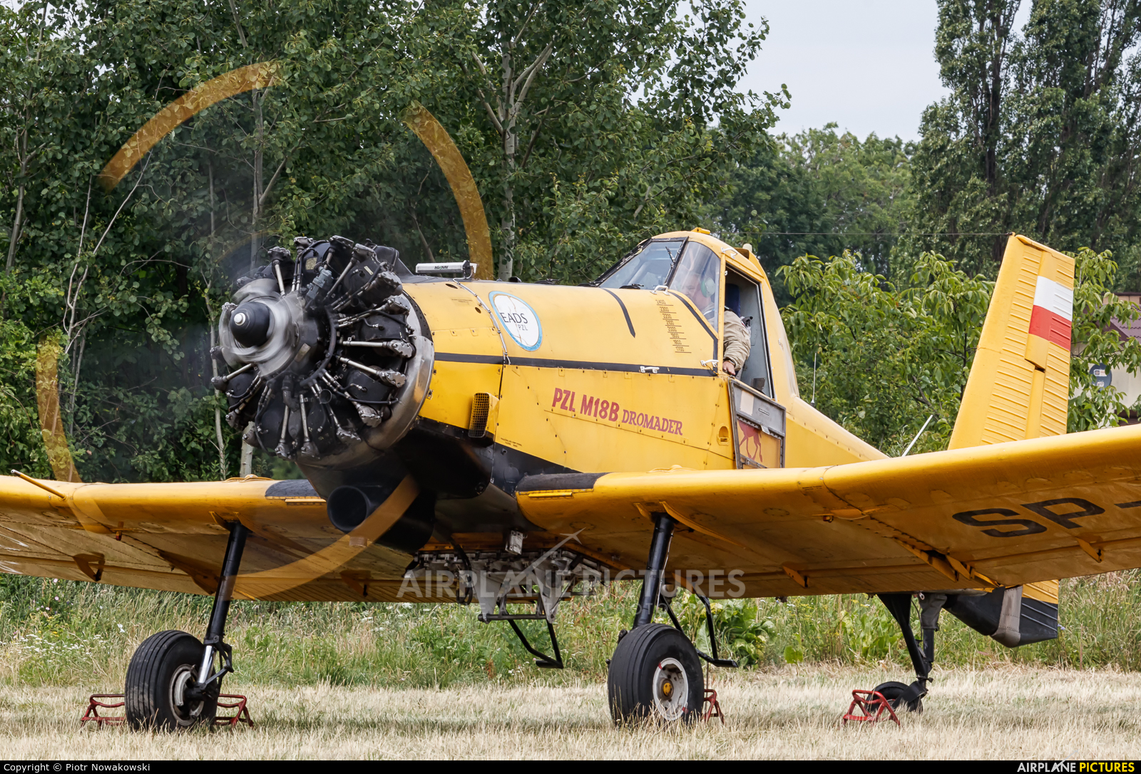 Aerogryf SP-ZWD aircraft at Piotrków Trybunalski