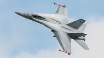 HN-406 - Finland - Air Force McDonnell Douglas F-18C Hornet aircraft