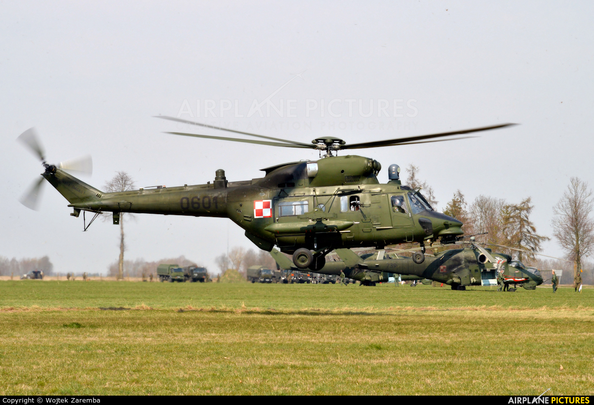 Poland - Army 0601 aircraft at Undisclosed location