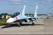 62 - Russia - Air Force Sukhoi Su-30SM aircraft