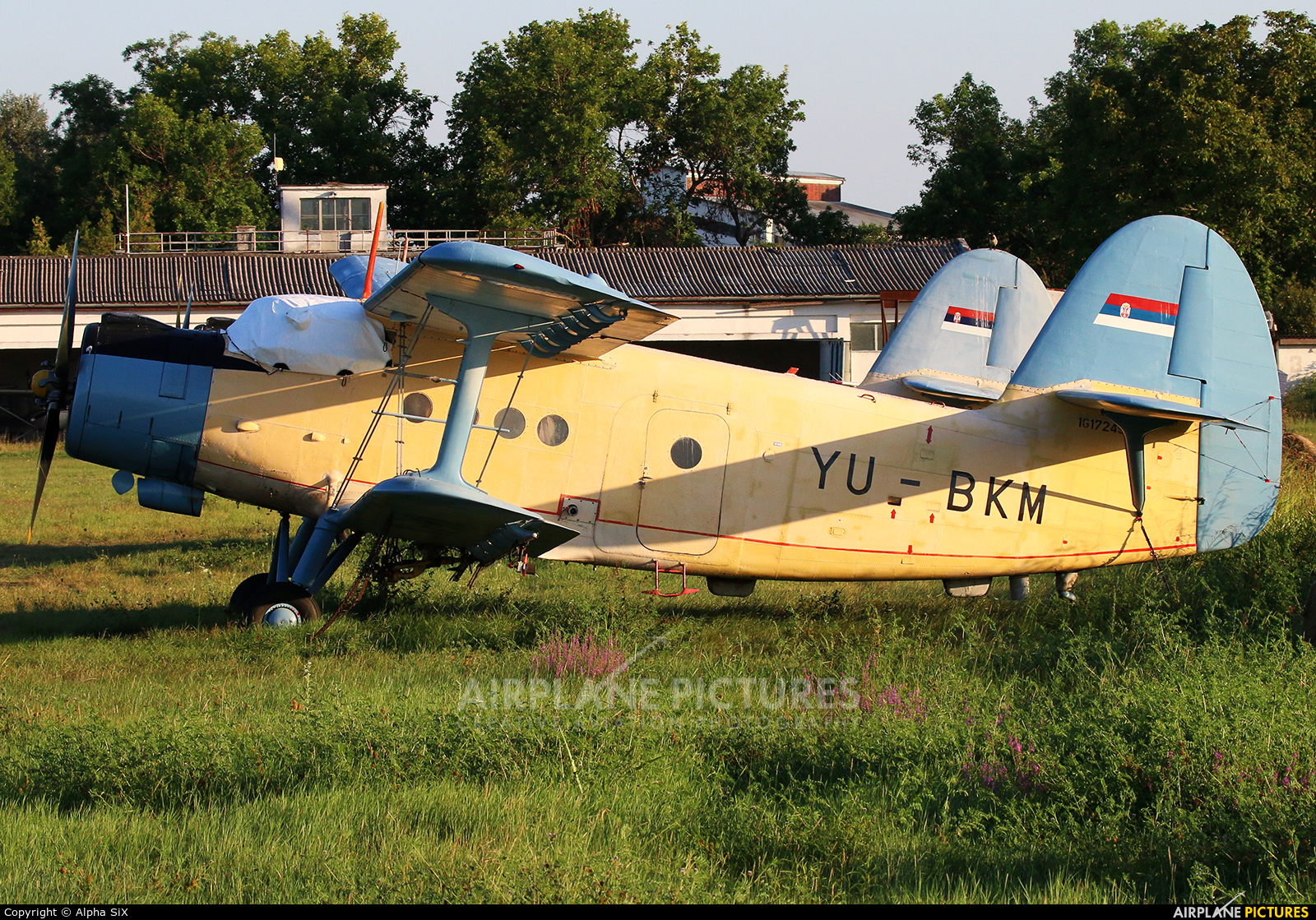 JAT Privredna Avijacija YU-BKM aircraft at Belgrade - Lisičji Jarak