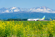 JA613A - - Airport Overview - Airport Overview - Photography Location aircraft