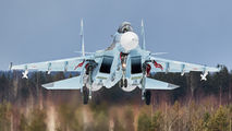 72 - Russia - Air Force Sukhoi Su-30SM aircraft