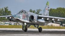 27 - Russia - Air Force Sukhoi Su-25SM aircraft