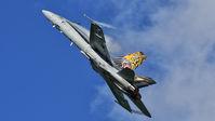 #3 Switzerland - Air Force McDonnell Douglas F/A-18C Hornet J-5011 taken by Piotr Gryzowski